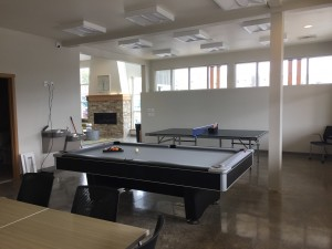 Ping Pong and pool table